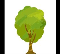 良質な木にこだわる